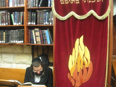 Photo of פרשת השבוע תרומה | קדושת בתי כנסיות ומדרשות