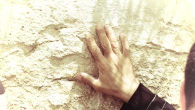 Photo of פרשת העקידה סגולה לישועה מיידית (עקידת יצחק לקריאה והדפסה)